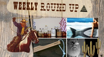 Weekly Round Up // May 13 - May 20