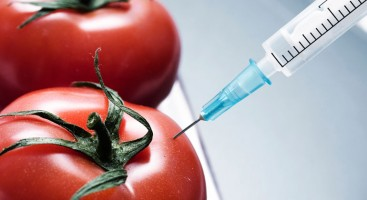 This Might Be Our Only Chance for GMO Labeling