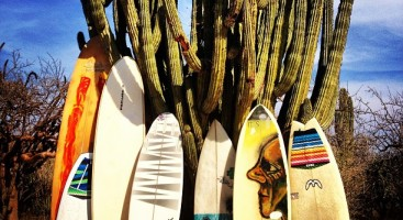 Quiver of the Week: May 25 - 31