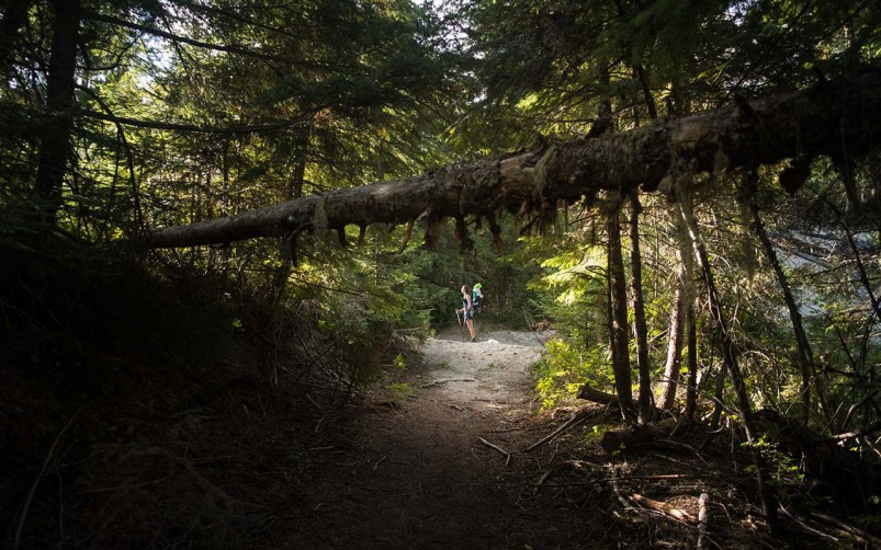 pacific-northwest-trail-2015_HIKE_RX100_001_02547